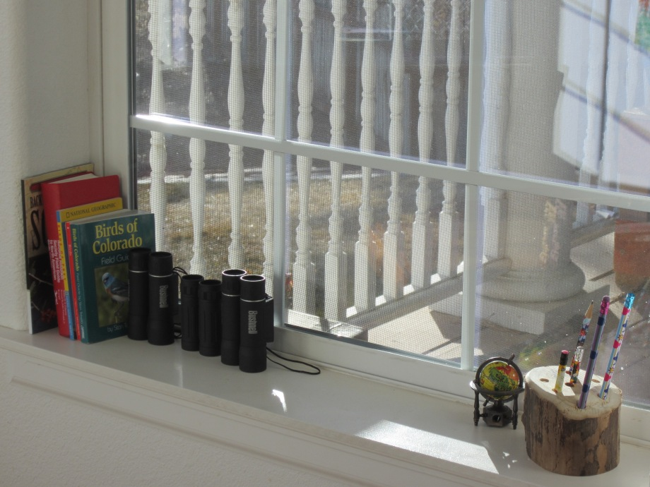Our bird I.D. books and binoculars are within easy reach.  We've been having a blast participating in Cornell's Bird Watch this winter. (The feeder is within eye sight of the bay window.)